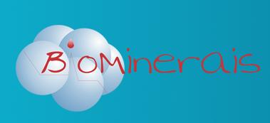 Biominerais